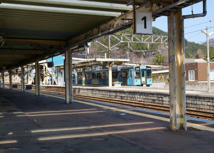 Tsurukameya Shokudo: Home of Aomori City's popular and famous maguro-don