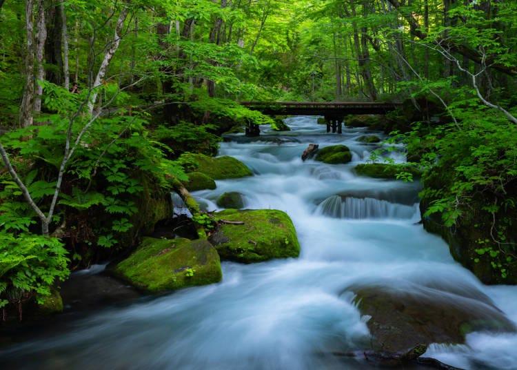 青森県では、四季折々の風土がグルメや風景を作る