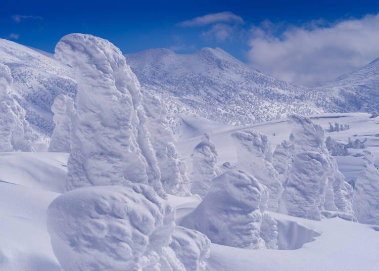青森必玩⑦欣賞「Snow Monster」樹冰奇景
