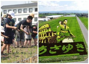 【2020年中止】驚愕の画力!青森・田舎館村の田んぼアートの魅力とは