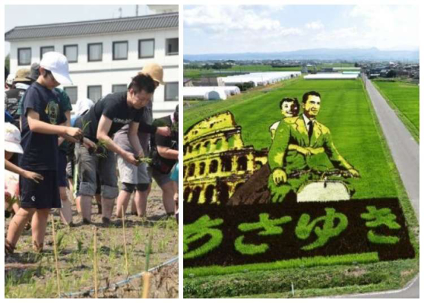 Inakadate Japan: This Rural Japanese Village Grows Epic Rice Field Art to Attract Tourists!