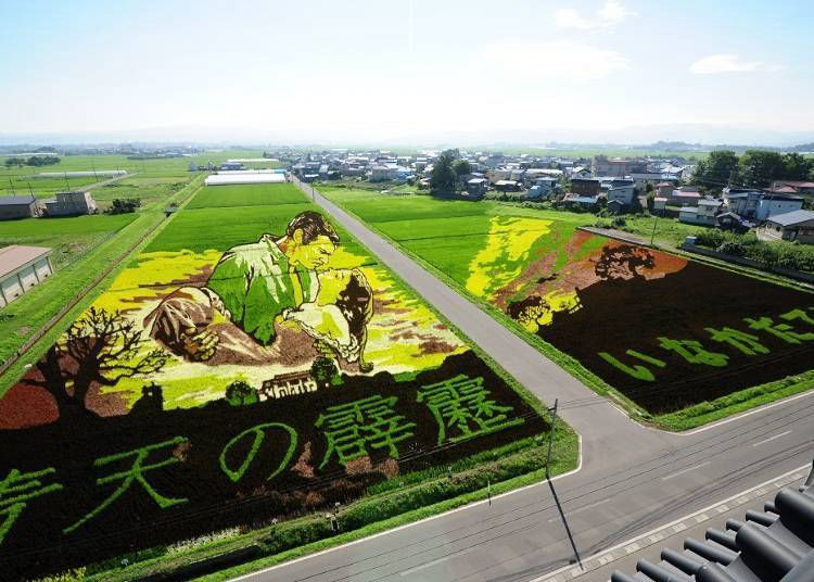 Some of the incredible Inakadate rice field art works created in the past!