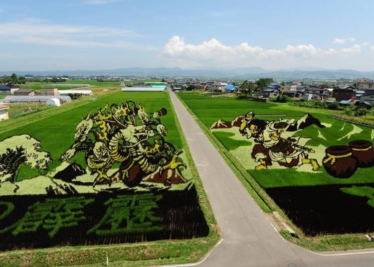 田舍館村是如何做出田園藝術的呢?