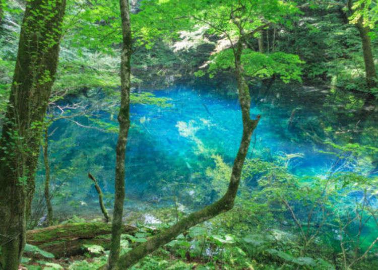Tohoku Coronavirus Cancellations: Events & Attractions Closed in Tohoku Due to Covid-19 (May 8, 2020)