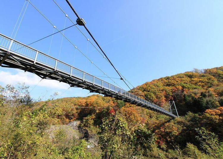 宮城賞楓景點⑨橫川溪谷:從吊橋上放眼望去,欣賞秋天的楓葉