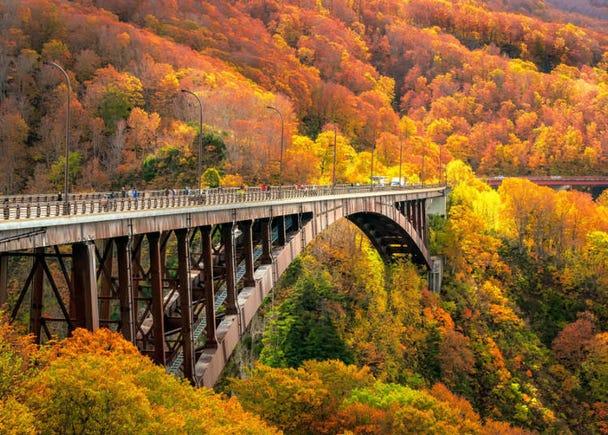 青森賞楓景點④城倉大橋:擁有全長360公尺的全景視野