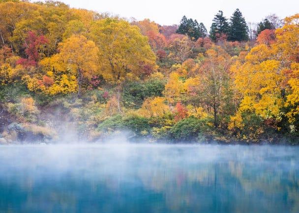 青森賞楓景點⑨地獄沼:楓葉與煙霧瀰漫的沼澤的結合
