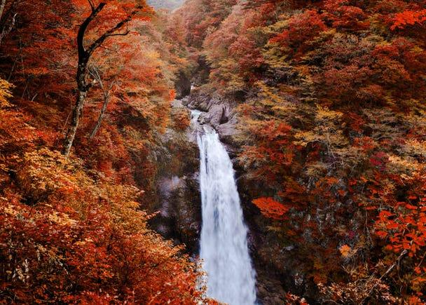 仙台の10月の気候