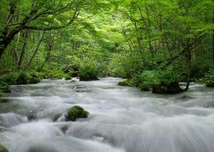 아오모리현 오이라세계류 여행을 위한 가는 방법에서 명소까지 총정리