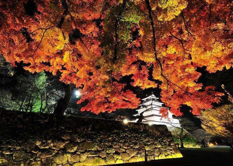 후쿠시마현이 자랑하는 단풍 명소&절정기 10선