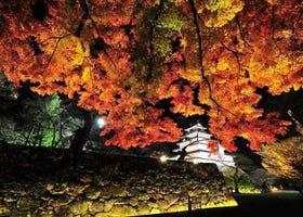 2020福島紅葉景點10選+最佳賞楓時期:裏磐梯、五色沼湖、鶴城