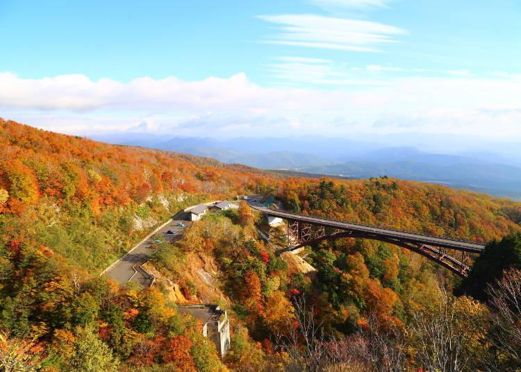 2. Bandai Azuma Sky Line: Gorgeous fall foliage seen from a mountain road