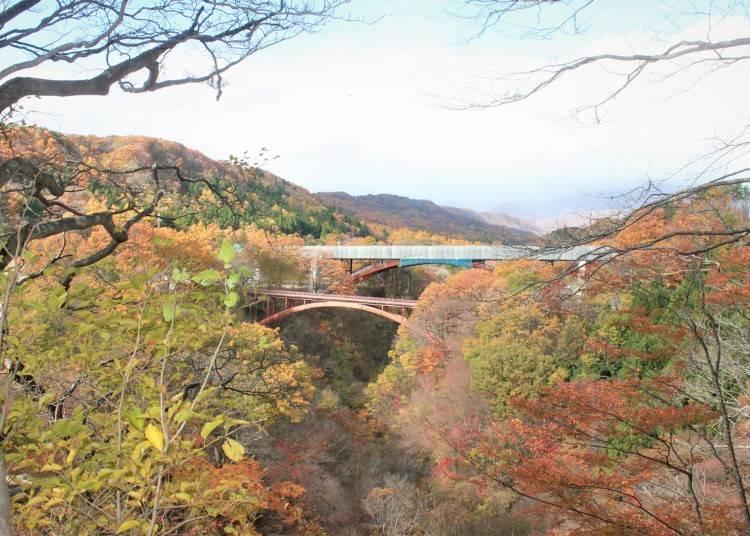 8.色とりどりに染まる渓谷【雪割橋・雪割渓谷】