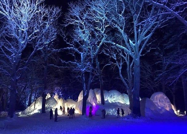 4. Shiretoko Drift Ice Festival: The fun continues into night!