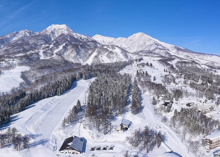 3.【赤倉温泉スキー場】天然雪100%の全17コース!
