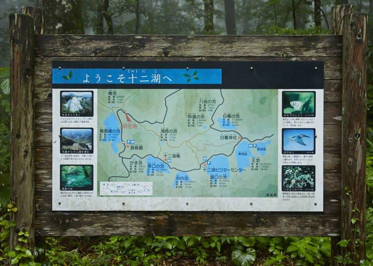 ■十二湖観光のハイライト、「青池」を目指して散策コースへ!