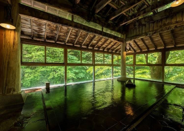 d. Add Yosenkaku Iwamatsu Ryokan's hot springs to your day-trip