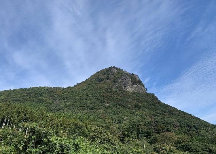 고릴라의 옆모습처럼 보이는! 화제의 '가마쿠라야마(가마쿠라 산)'를 체크