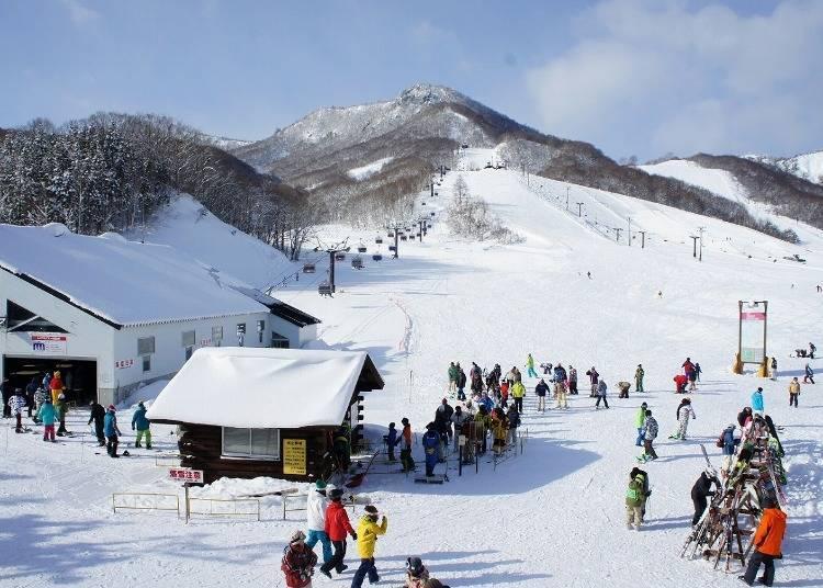 아이즈고원 다이쿠라 스키장은 어떤 곳?