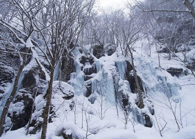 1:ダイナミックな氷瀑に魅入る「奥入瀬渓流」(青森)