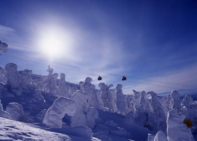7:雪と氷の造形美「蔵王の樹氷」(宮城・山形)