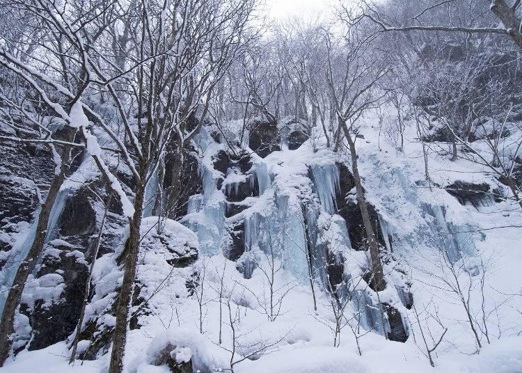 1. 아아모리 오이라세계류 - 얼음에 둘러쌓인 폭포의 다이나믹함이 느껴진다