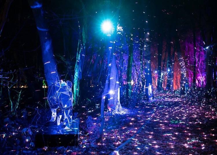 4.十和田湖 光の冬物語のライトアップを見に行く