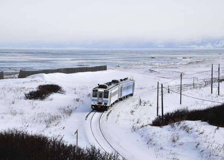 Travel Hokkaido by Train! The Ultimate Guide to the Hokkaido Rail Pass and Seasonal Sightseeing Trains