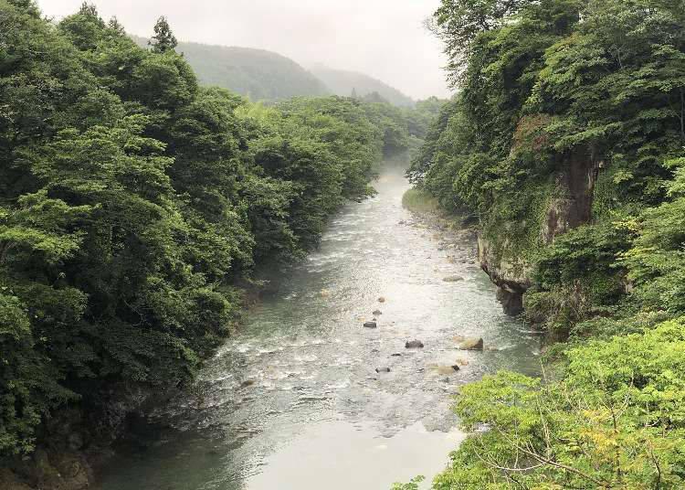 從仙台站到秋保溫泉來場1日遊~