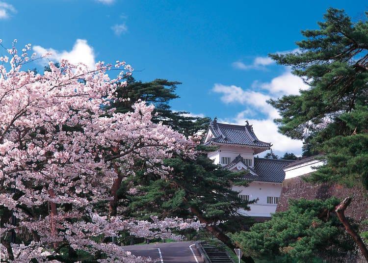 4月仙台的觀光景點&行程推薦