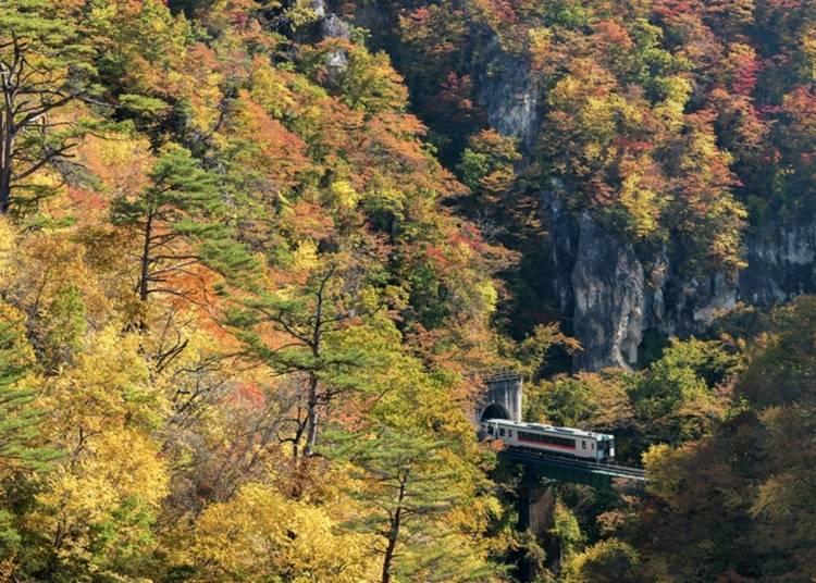 3. Miyagi Prefecture's Naruko Onsen (Japan's Famous Baths - Naruko)