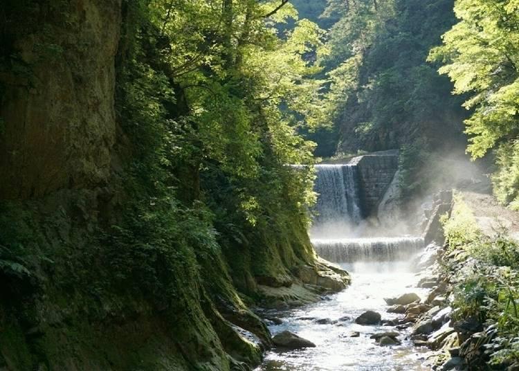 7. Shirakami Mountains (Anmon Falls)