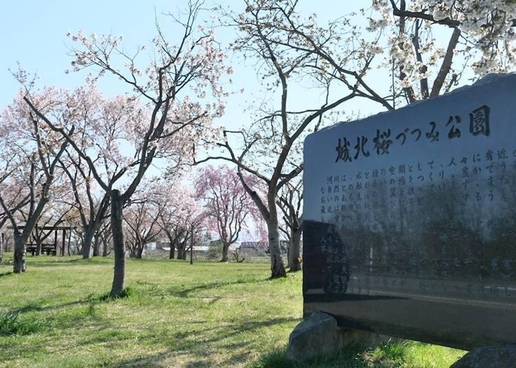 6. Johoku Sakura Zutsumi Park