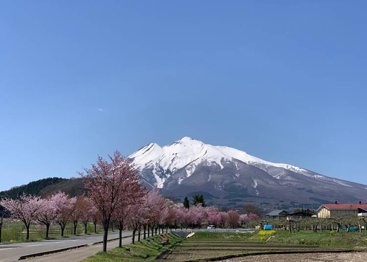 2. Mt. Iwaki