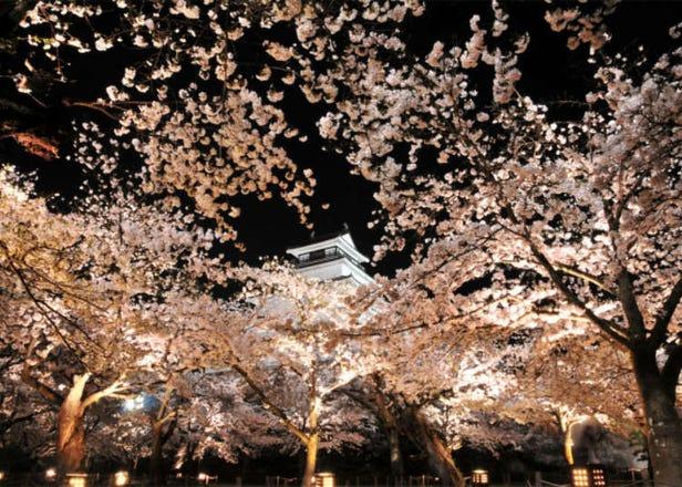 【2021年】東北で楽しめる桜まつり10選!今年の開催状況やコロナ対策は?