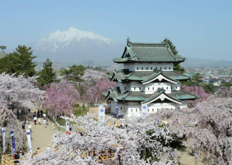 10) 히로사키 벚꽃축제(아오모리현)