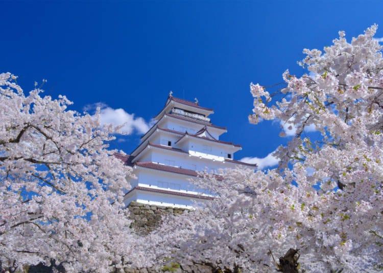 1)鶴城櫻花祭(福島縣)