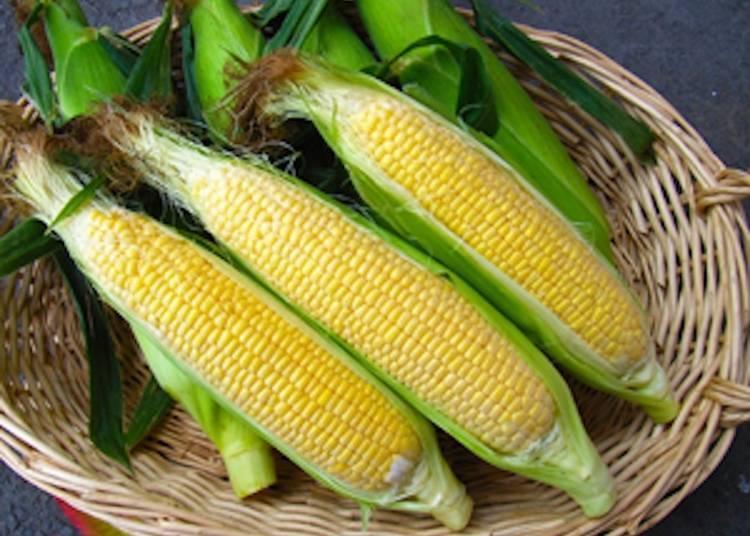 4.玉米DAKEKIMI