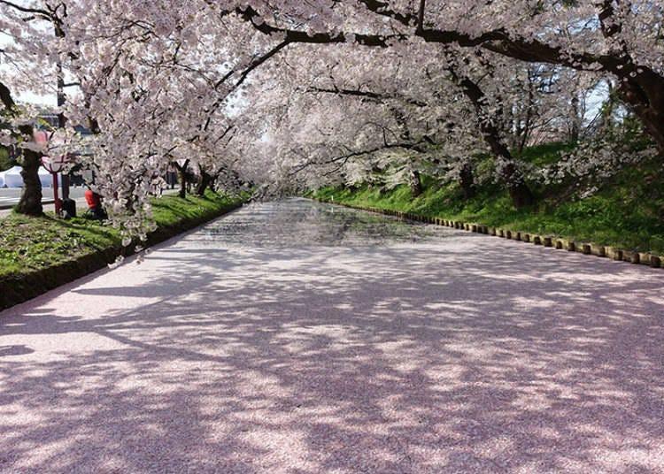弘前公園すぐそばの「スターバックス コーヒー 弘前公園前店」