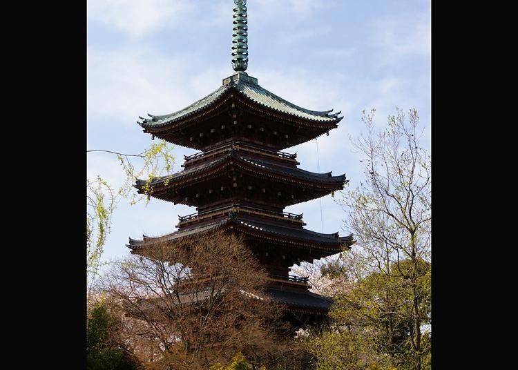 第5名:旧宽永寺五重塔
