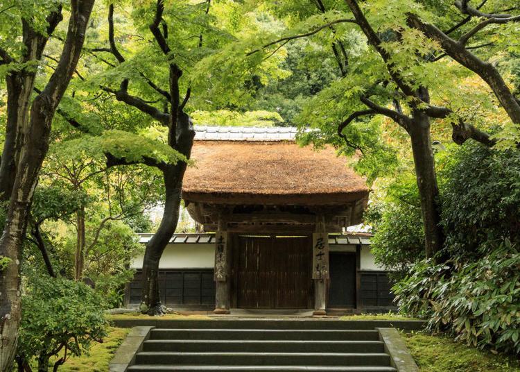 第4名:圆觉寺