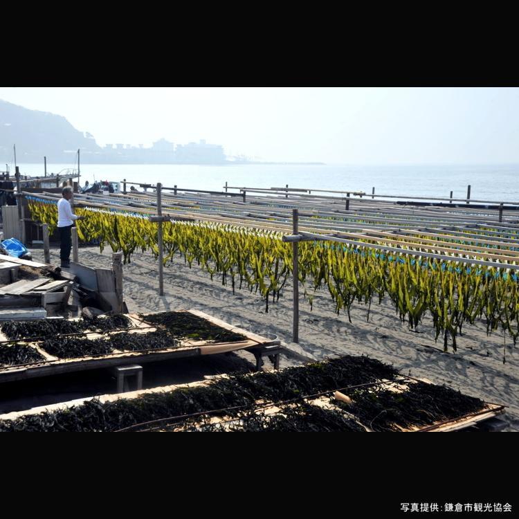 Tokyo Trip: Top 8 Most Popular Beaches in Kamakura (August 2019 Ranking)