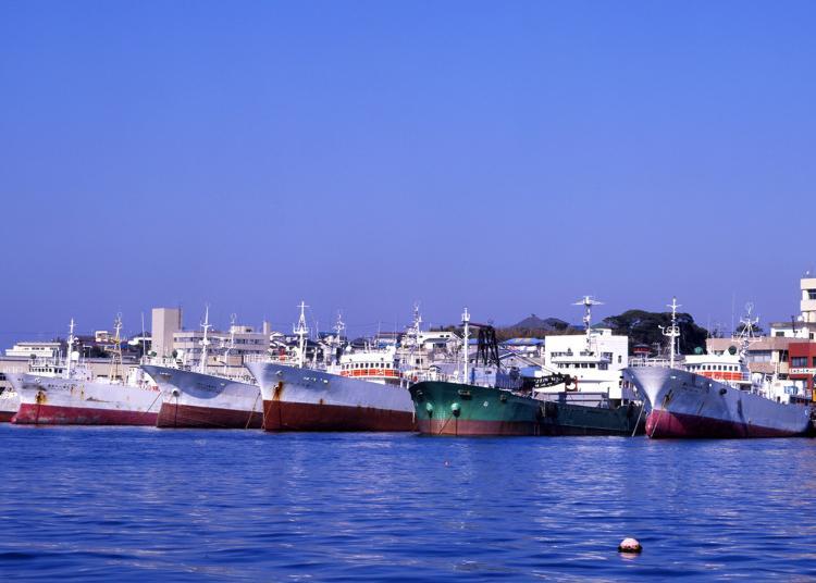 6. Misaki Harbor