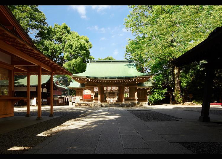 9. Kawagoehikawa Shrine
