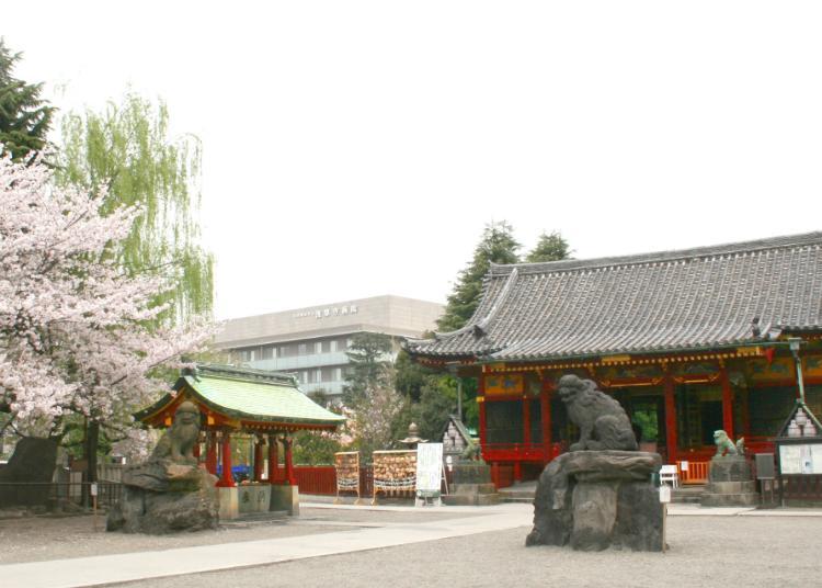 10. Asakusa Shrine
