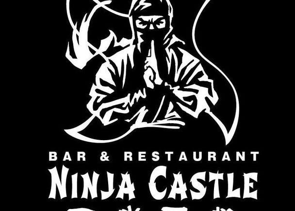 2.NINJYA CASTLE