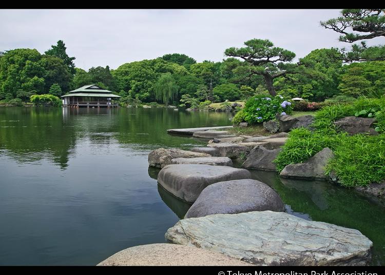 9.Kiyosumi Gardens