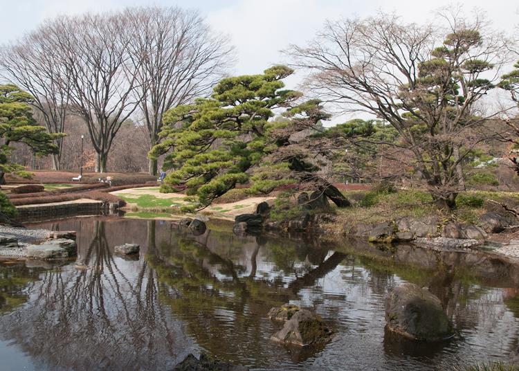 10.Ninomaru Garden