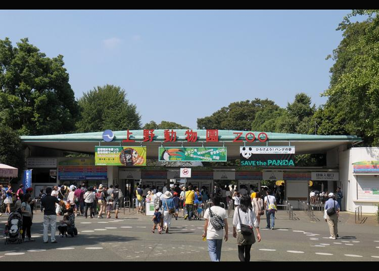 2.Ueno Zoo (Ueno Zoological Gardens)