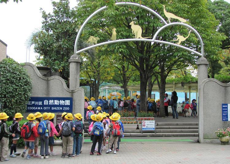 1위. 에도가와 구 자연 동물원